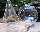Terrariums Teardrop or Round Gardening DIY  for Wedding favors Centerpieces