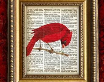 Beautiful RED CARDINAL Bird Color Vintage Art Print 8x10 on Antique 1881 Book Page or Dictionary Page
