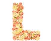 "Alphabet Letter  ""L"" Photo Art 8""x10"" Rose Letter"