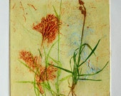 Collograph mono print, wonderful weeds. Botanical print.