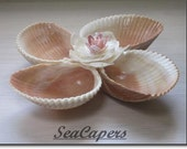 Sea Shell Dish for Jewelry, Candy, Keys, Desk Organizer, Hostess gift, Coin sorter, Style 14S