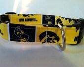 Iowa Hawkeyes dog collar..... Your choice of size