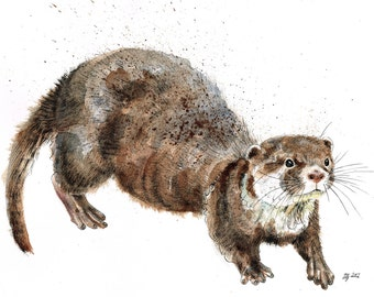 Mounted Limited Edition Giclee Print of  'Otis' Otter