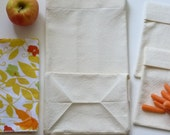 Organic Canvas Lunch Set - bag, napkin, and 2 sandwich/snack packs - Natural cotton and butterfly print napkin
