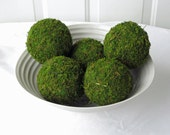 Moss Pomander Balls, Set of 5,  4 inch Moss Balls for Home or Wedding Decor