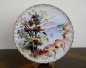 Vintage Hand Painted Plate - Japan - signed by S. Suzuki