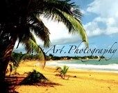 Paradise- Puerto Rico 4x5.3 in. matte finished print