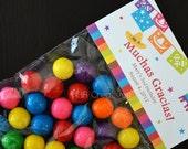 Personalized Fiesta Birthday Treat Bag Topper - DIY Printable Digital File