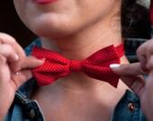 Ladies and Gentleman's Tamale Bow Tie