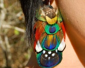 PEACOCK TRANCE Feather Earrings
