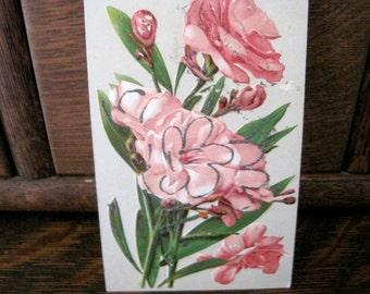 Antique German Flower Postcard