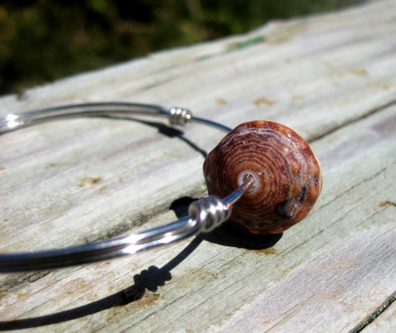 Hawaiian Brown and White Cone Snail Shell Top (Puka Shell) Wire Bangle Bracelet