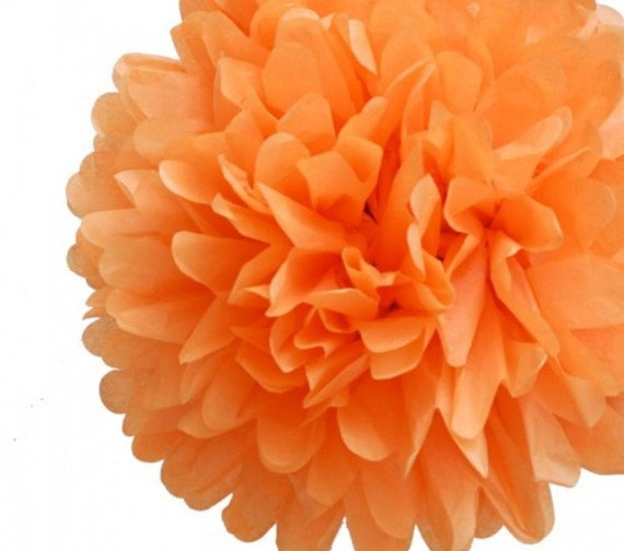 Tissue Paper Pom Pom (kissing balls)  Orange