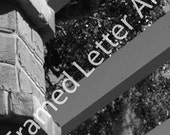 Letter E- Alphabet Photography Individual 4x6 Black and White Photo for Name Frames (E2)