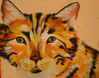 Cat, Original painting of a cat, warm bright colors, yellows, oranges, white, size 12x12,