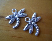 Dragonfly charms, Charity
