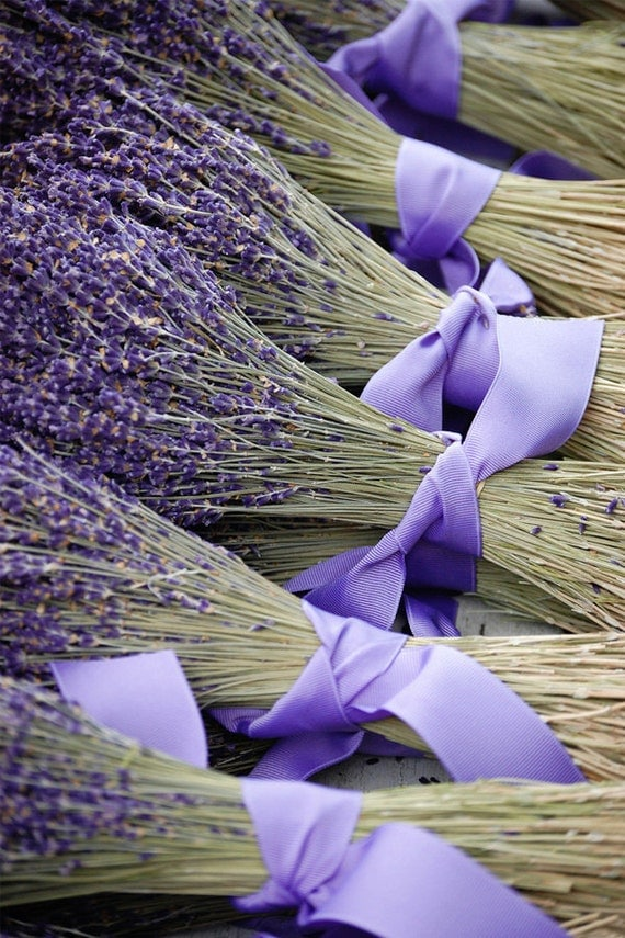 how to make dried lavender bunches