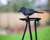 Wrought Iron Garden Trellis with Birds