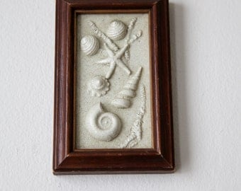 Vintage Shells Beach Wall Hanging Picture Framed