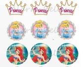 Disney Princess Bottle Cap Image File