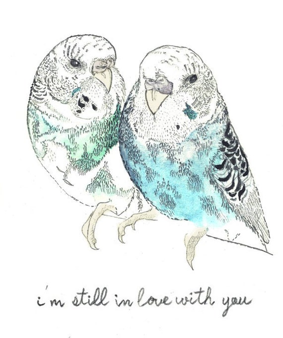 """A4 Digital Print - Budgie Birds """"I'm Still In Love With You"""""""