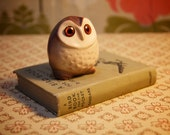 Oh hey, it's a little owl.