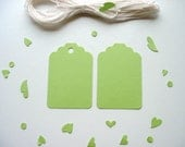 30 Apple Green Tags. Cotton Strings Included. Your Choice - with or without holes.
