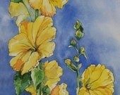 Golden Flame Hollyhock - Yellow Blossoms Against Blue Sky