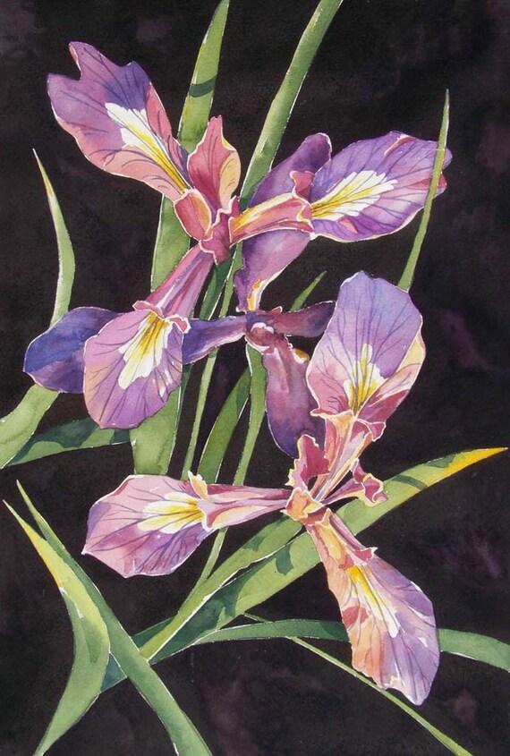 Wild Iris - luxury print lavender, purple, gold and moss green