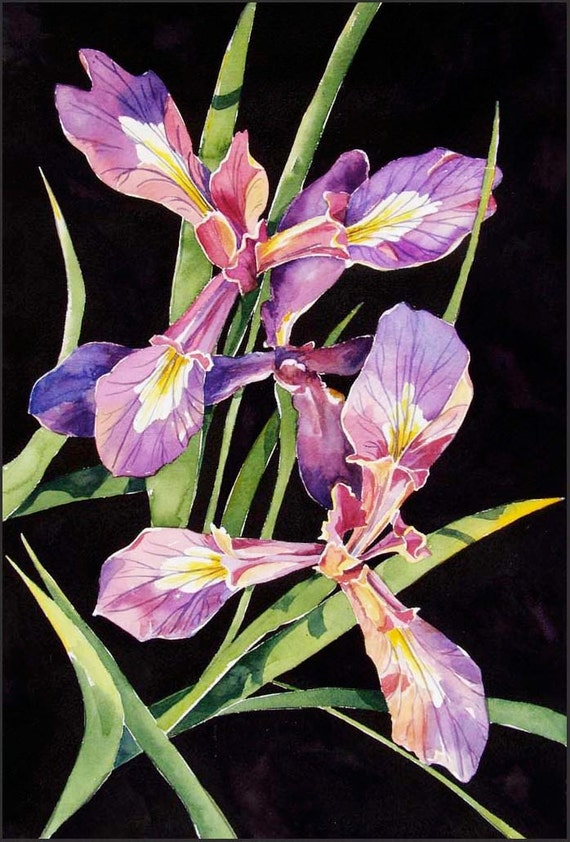 Wild Iris - small print lavender, purple, gold and moss green