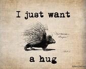 Antique Porcupine Animal Forest Hug llustration Digital Download for Papercrafts, Transfer, Pillows, etc. No 1443