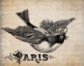 Antique Crown Bird French France Digital Download for Tea Towels, Papercrafts, Transfer, Pillows, etc Burlap No 5975