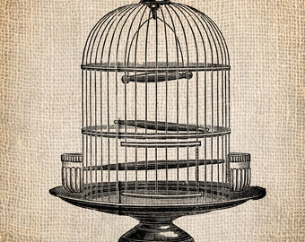 Antique Bird Cage Illustration Clip Art  Digital Download for Papercrafts, Transfer, Pillows, etc No 1221