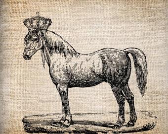 Antique Horse Crown Farm Horsemanship Rider Digital Download for Tea Towels, Papercrafts, Transfer, Pillows, etc Burlap No 5877