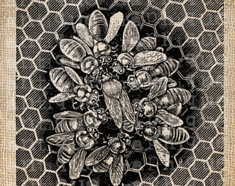 Digital Collage Sheet Download Sheet Fabric Transfer BEE HIVE for Tea Towels, Papercrafts, Transfer, Pillows, etc Burlap No 7007
