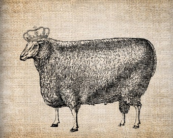 Digital Collage Sheet Download Sheet Fabric Transfer SHEEP WITH CROWN for Tea Towels, Papercrafts, Transfer, Pillows, etc Burlap No 7089