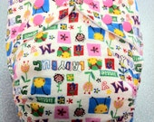 Ladybug and flowers cloth diaper with snap in zorb soaker