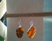 Glowing Amber/Brown Seaglass Earrings