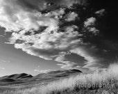 "Photography Print 7.5 x 9.5 - ""Grasslands"" - black and white summer grasslands clouds"