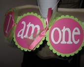 I Am One High Chair Banner