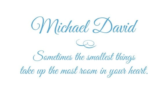 """Vinyl Wall Decal - Sometimes the Smallest Things Take Up Most Room in Heart Personalized Name for Baby Nursery 18""""H x 36""""W FS062"""