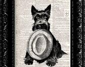 Scottish Terrier Vintage Dictionary Print Vintage Book Print Page Art Upcycled Vintage Book Art