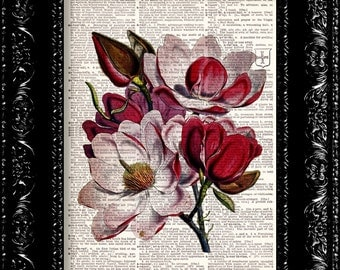 Red Magnolia - Dictionary Print - Vintage Book Print Page - Up-cycled Book Art - Gift For Mother - floral art print - wall decor - art print