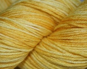 Sunny Side Up: Superwash Merino and Silk Fingering