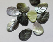 Green Shell Leaf. Carved Leaf. Jewelry supplies