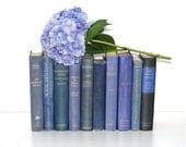 Hydrangea Blue 10 Book Vintage Collection Interior Design Vintage Book Decor Wedding Special Events