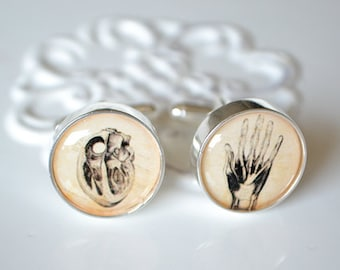 Heart in Hand Cufflinks - human body anatomy - human heart