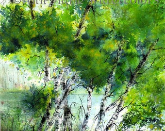 "Summer Birches -  watercolor landscape - 10"" x 10"" signed giclee print"
