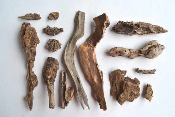 Driftwood  13 pieces  gorgeous INSTANT COLLECTION great for altered art, crafts, sculpture  offered by Elizabeth Rosen