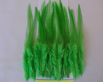 Receive   (20) Feathers... Choose Colour.......Hair Extension....Earings.....Fly Tying....More